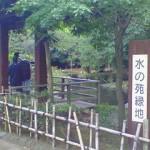 mizunokouen